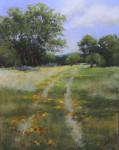 Tom's Tracks #  by Mary McIntosh