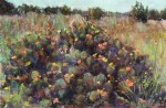 Blooming Cactus #  by Dina Gregory