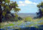 A Small Blue View #  by Bob Rohm