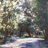 The Bright Path #  by Judy Gelfert