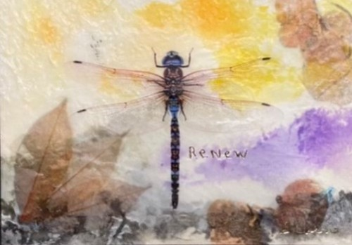 Renew, Dragonfly by Sandra Currie