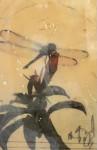 Dragonfly Joy #  by Sandra Currie