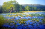 Abundant Texas Spring #  by Milbie Benge