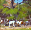 Hill Country Goats #  by Jimmy Dyer