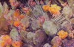 Cactus Fiesta #  by Dina Gregory