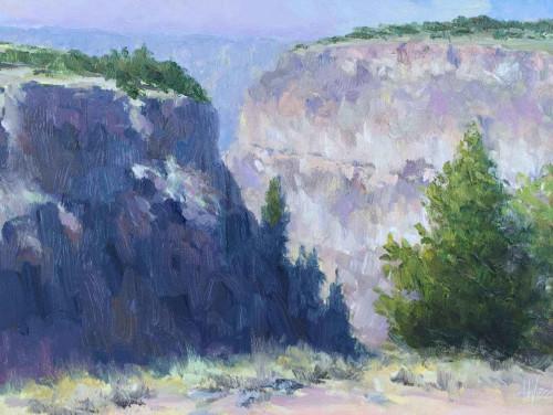 Canyon View by Don Ward