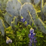 Bluebonnets and Prickly Pear #  by Mitch Caster