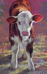 Little Heifer #  by Kathleen Cook
