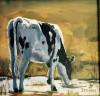 Holstein Drinking #  by Sandra Stevens