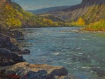 Fall on the Rio #  by Richard Prather