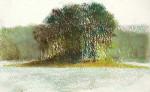 Lake DeGray Tree Island #  by Mark Stewart