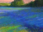 Fields of Blue #  by Kathleen Cook