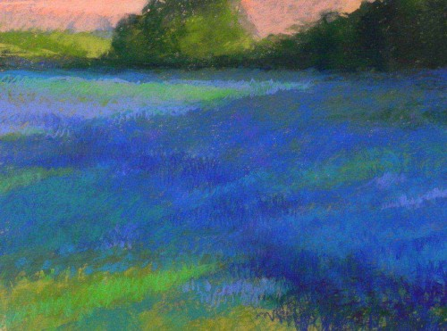 Fields of Blue by Kathleen Cook