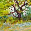 Twisted Oak #  by Bob Rohm