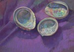 Abalone Iridescent #  by Kathleen Cook