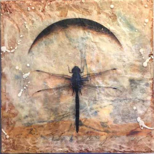 Dragonfly Moon by Lyn Belisle