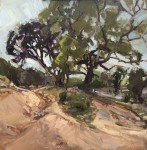 Hill Country #  by Alison Menke