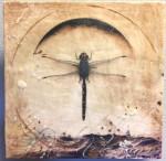 Dragonfly Sea #  by Lyn Belisle